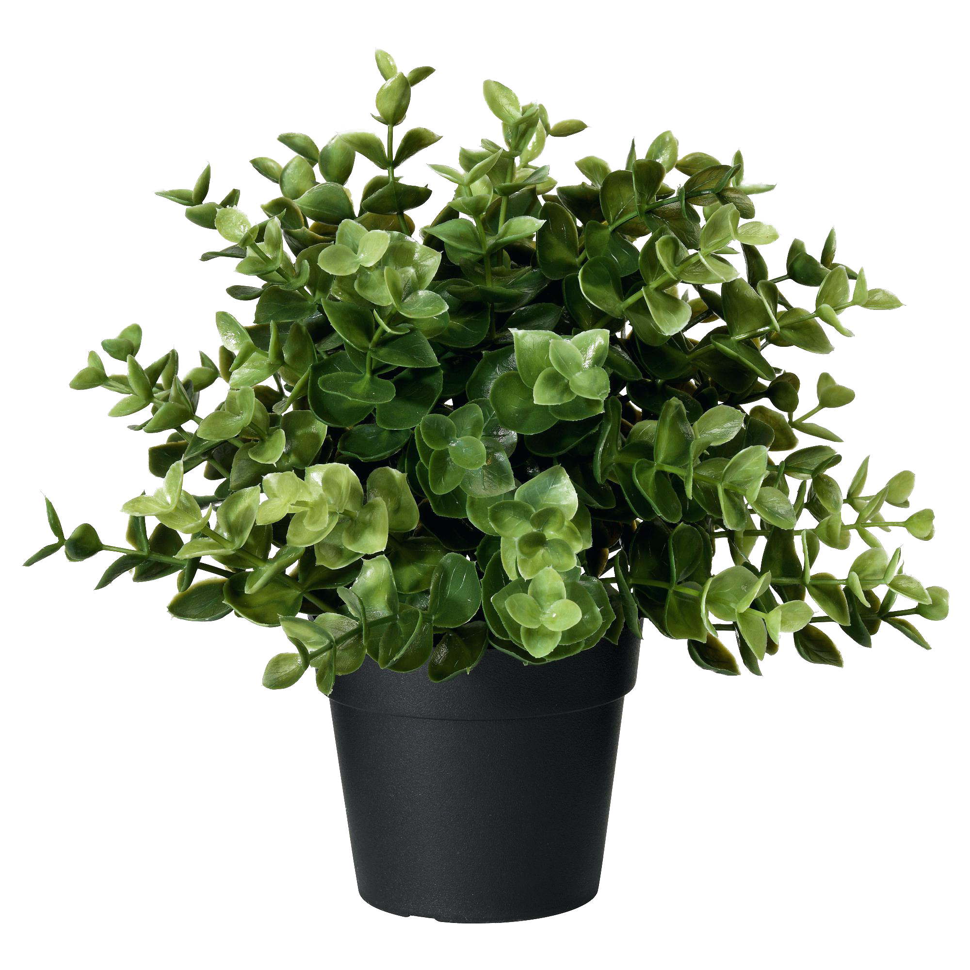 Artificial Potted Plant Oregano