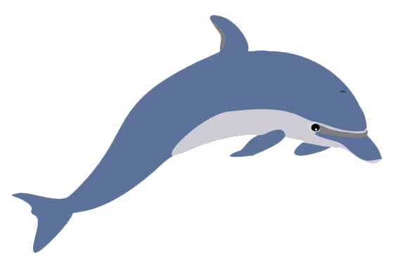 Cute Clipart Dolphin PNG Image