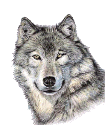 cute wolf face png image purepng free transparent cc0 cute pig clipart free cute pig clip art free