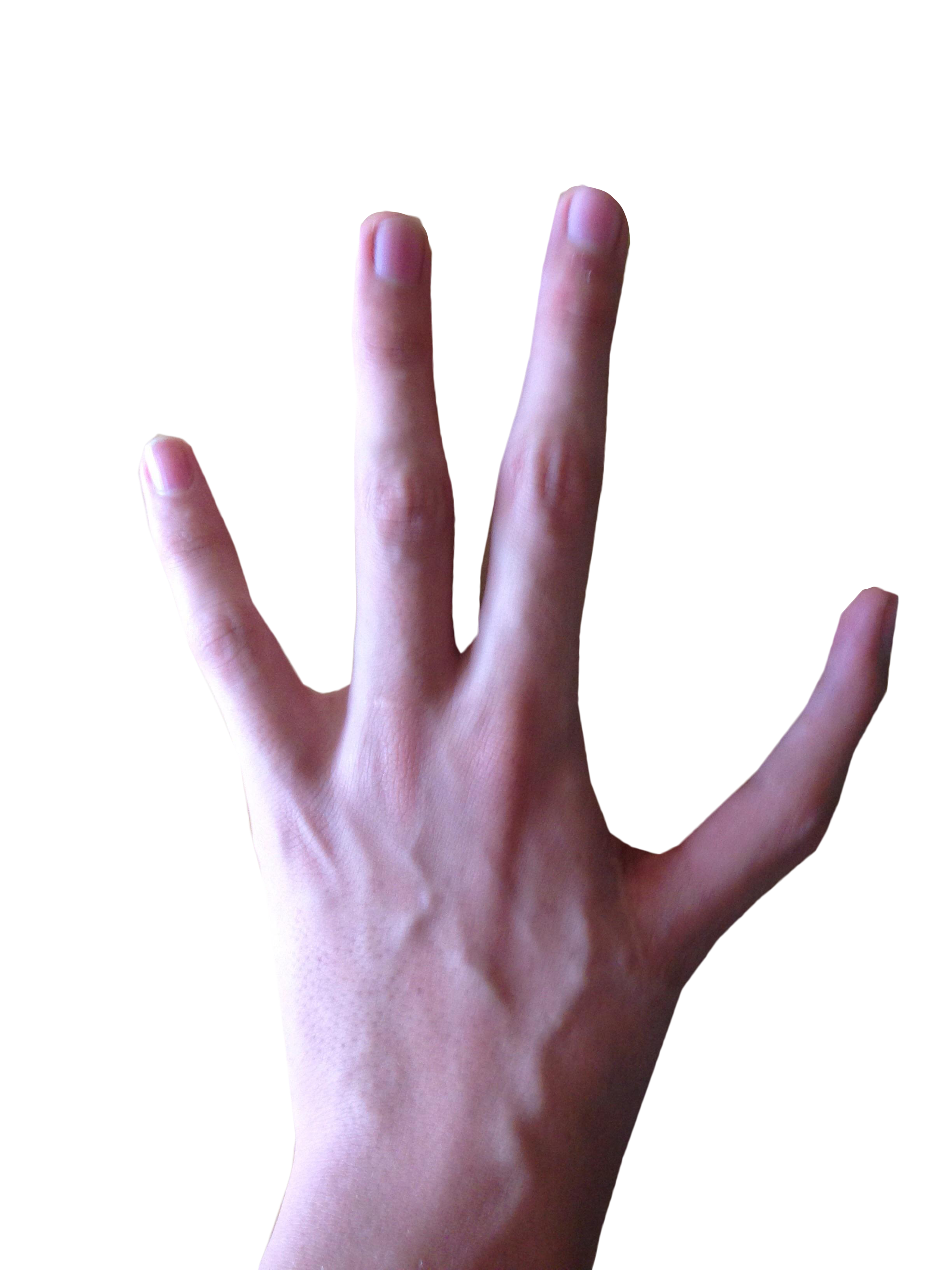 4 Fingered Hand PNG Image
