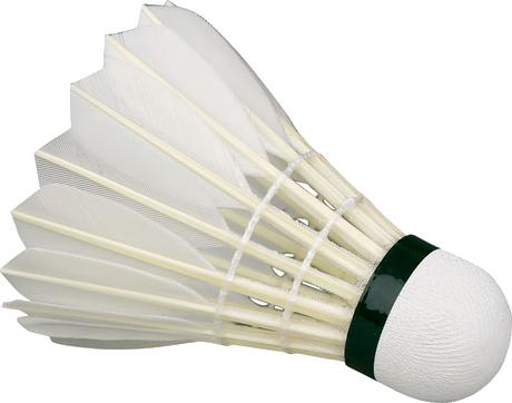 White Shuttlecock / featherball