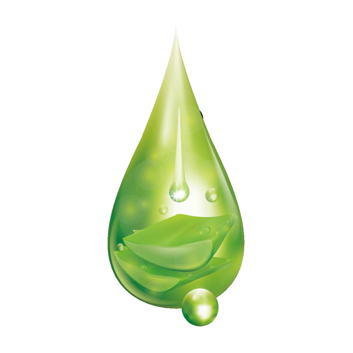 Aloevera Drop PNG Image