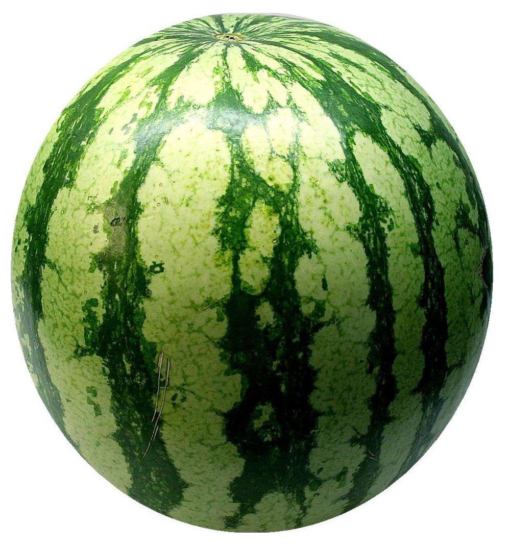 Big Green Watermelon