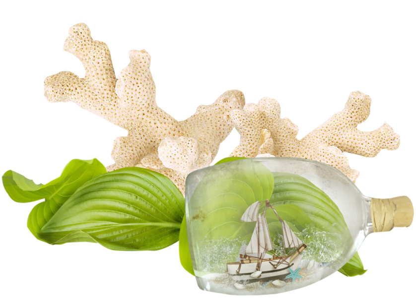 Aquarium Decor with Bottle Ship PNG Image