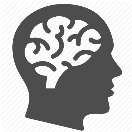 Brain PNG Image