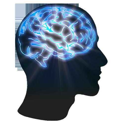 Brain Education Help  Idea  Knowledge  Mind