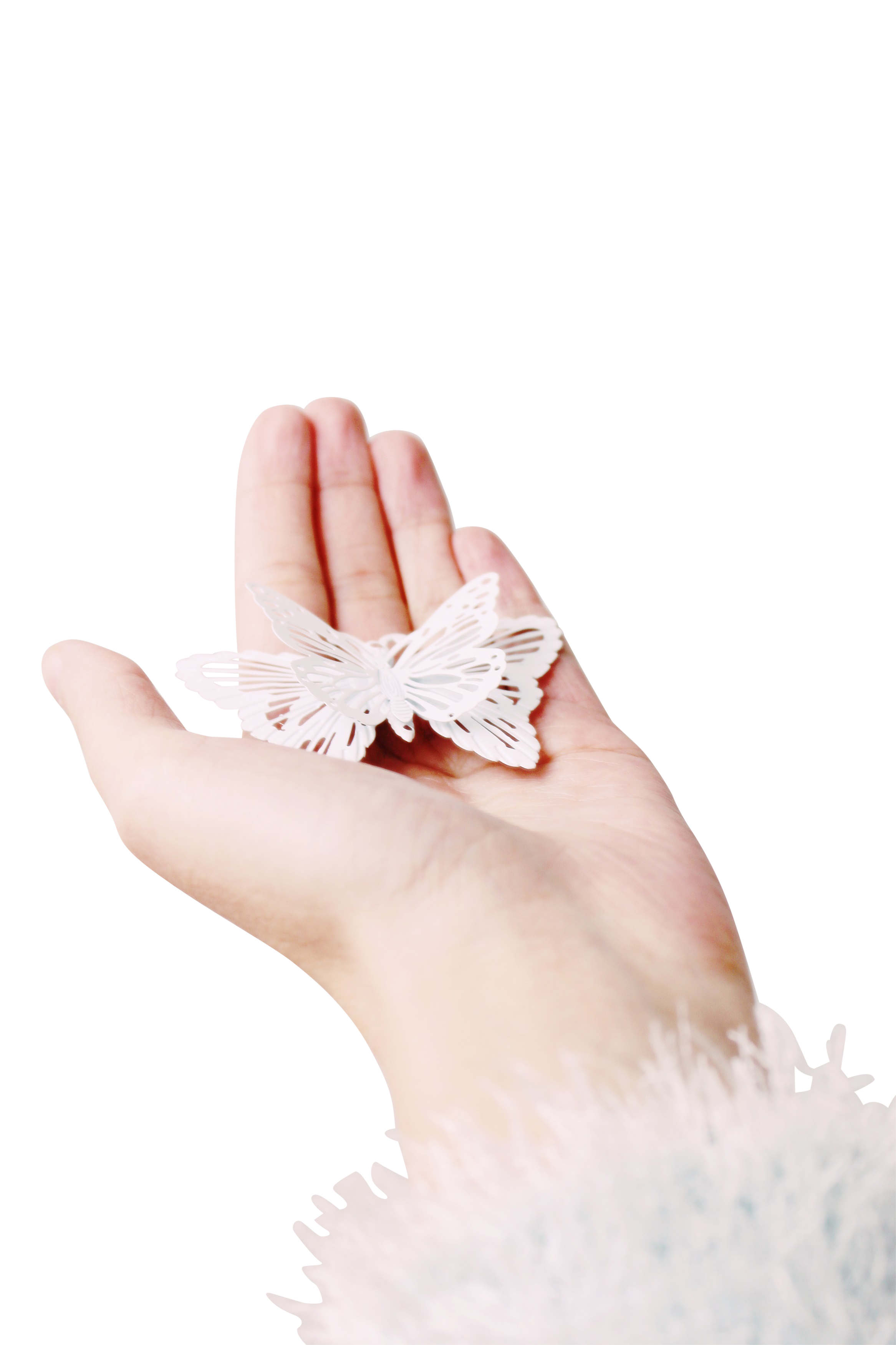 Butterfly In Hand PNG Image