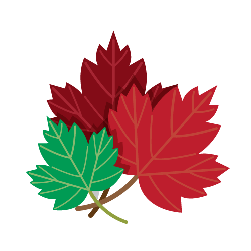 Drawing of Red and Green Maple Leaves PNG Image