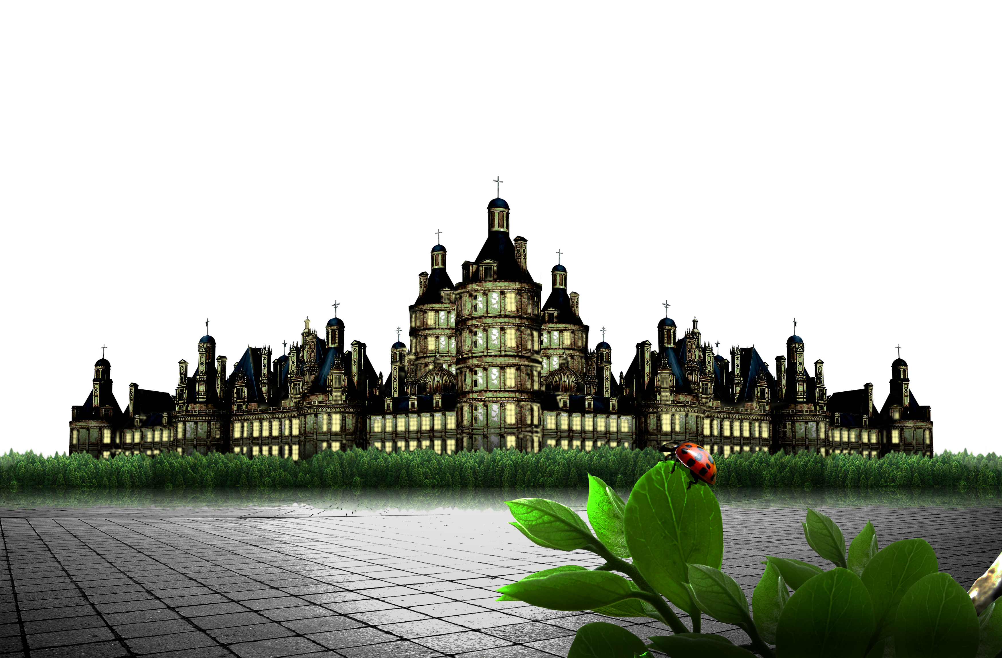 Picture of a Castle with a Ladybird on a plant PNG Image