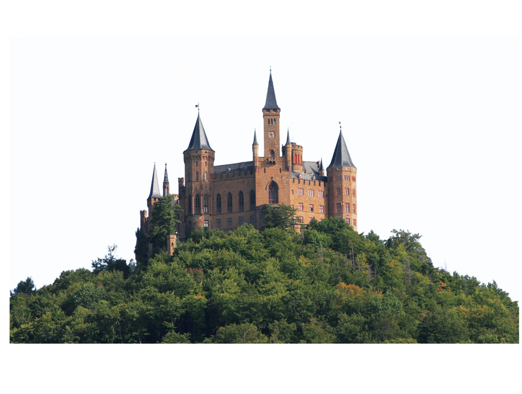 Castle on a Hill Surrounded by Trees