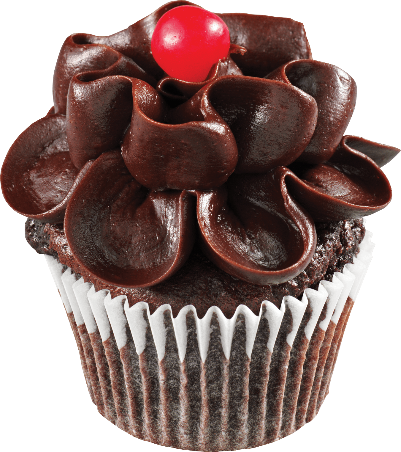 Chocolate Flower Cupcake PNG Image