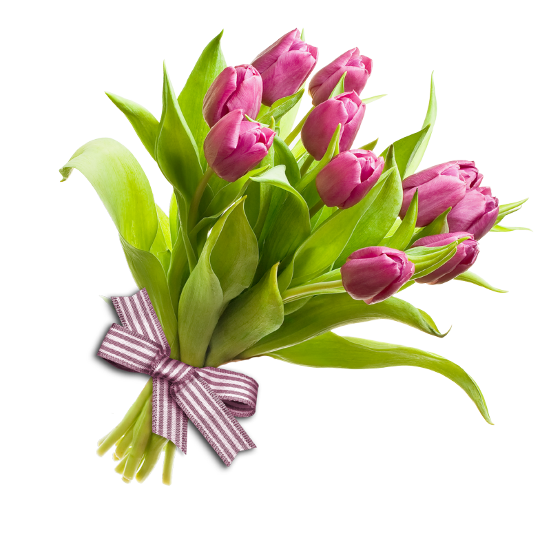 Bunch of flowers PNG Image