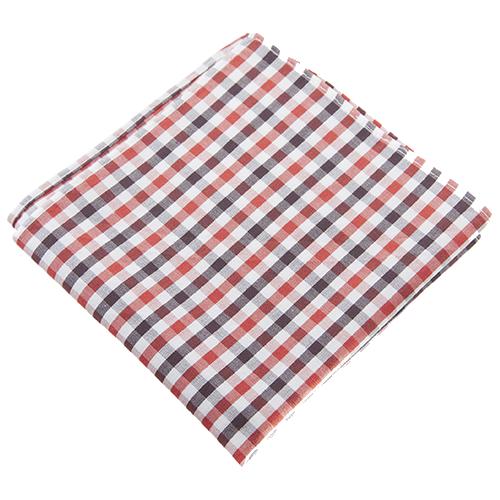 Gingham revolution handkerchief PNG Image