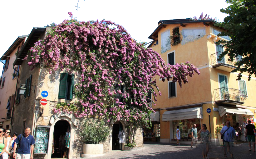 Building Drapped with Flowers and People Walking PNG Image