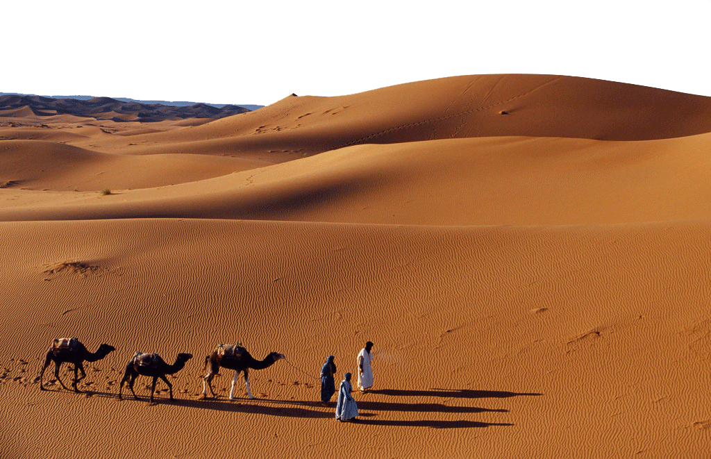 Journey with Camels in the Desert PNG Image