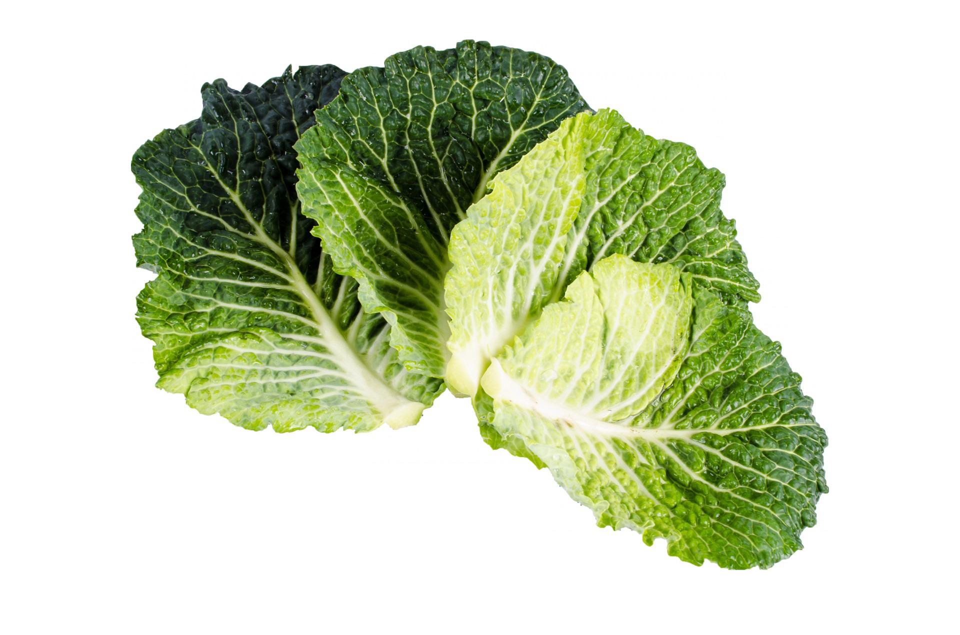 Kale PNG Image