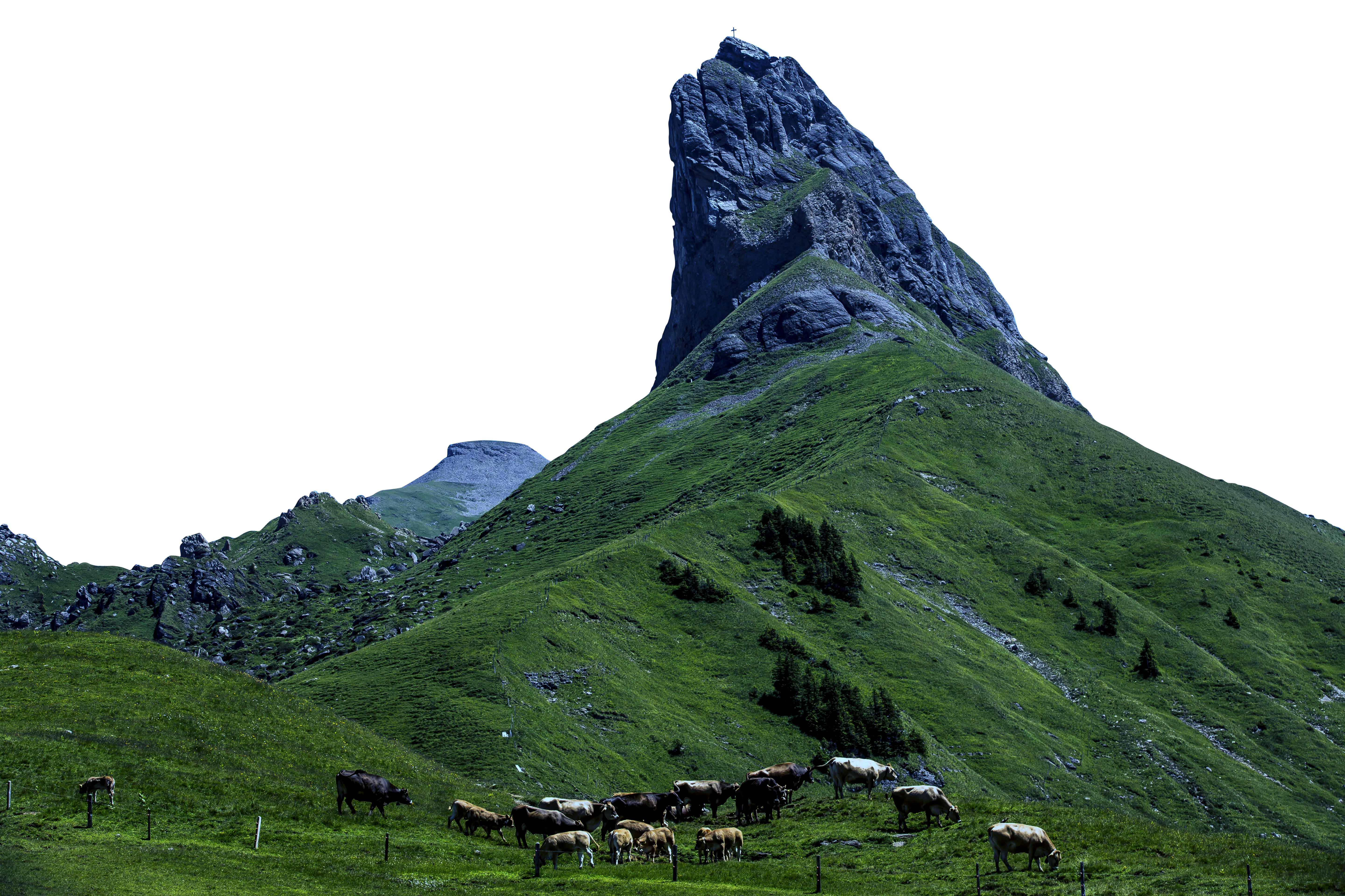 Mountain and Landscape view