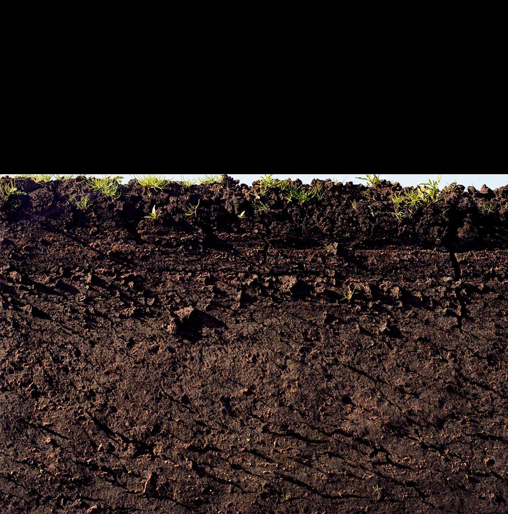 Mud PNG Image