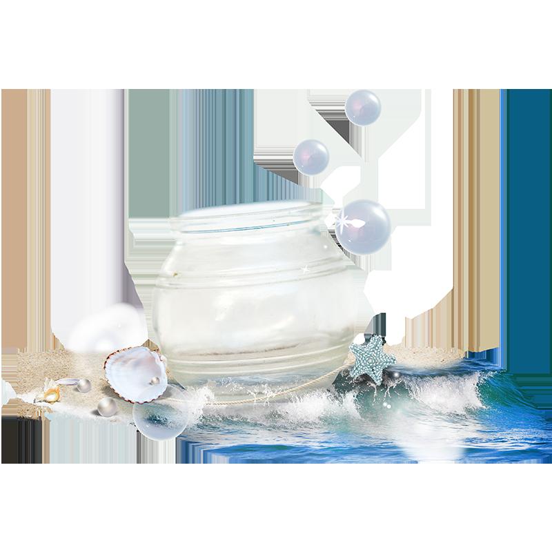 Crystal Pot with Sea Shells PNG Image