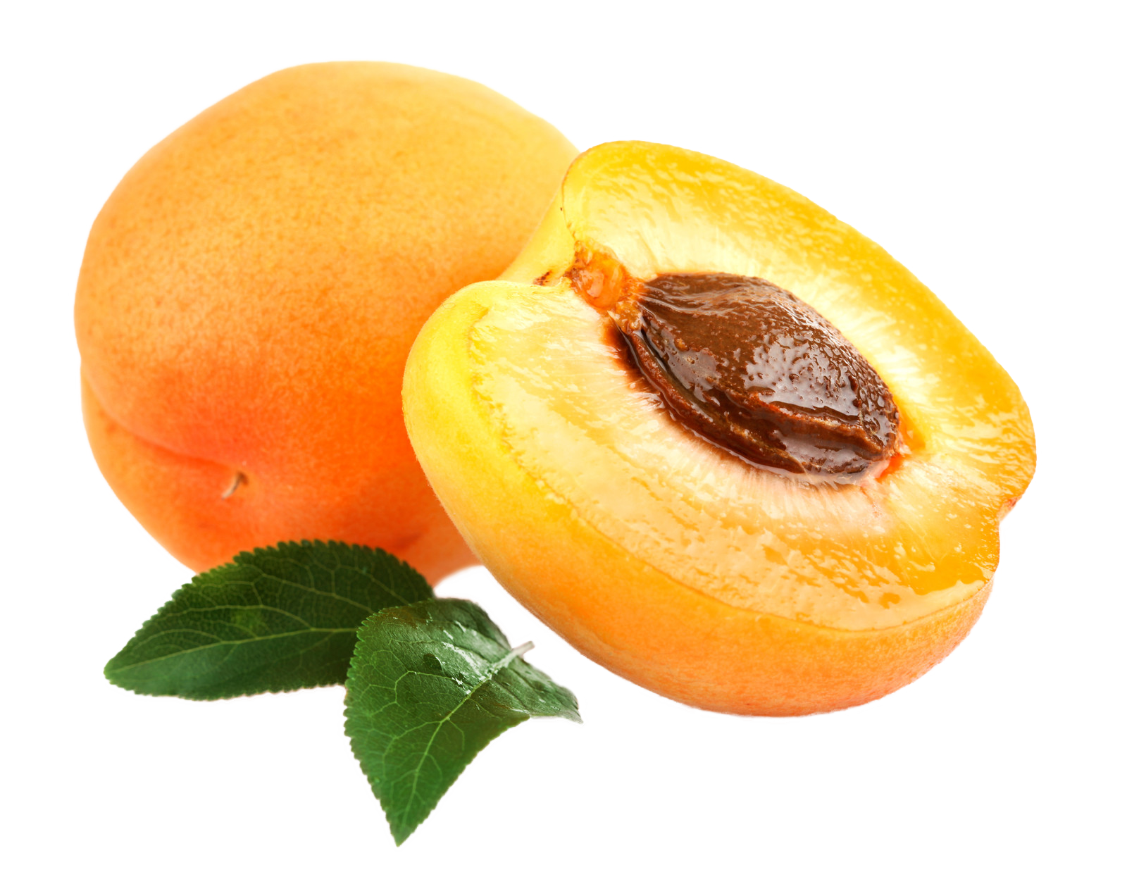 Apricot PNG Image