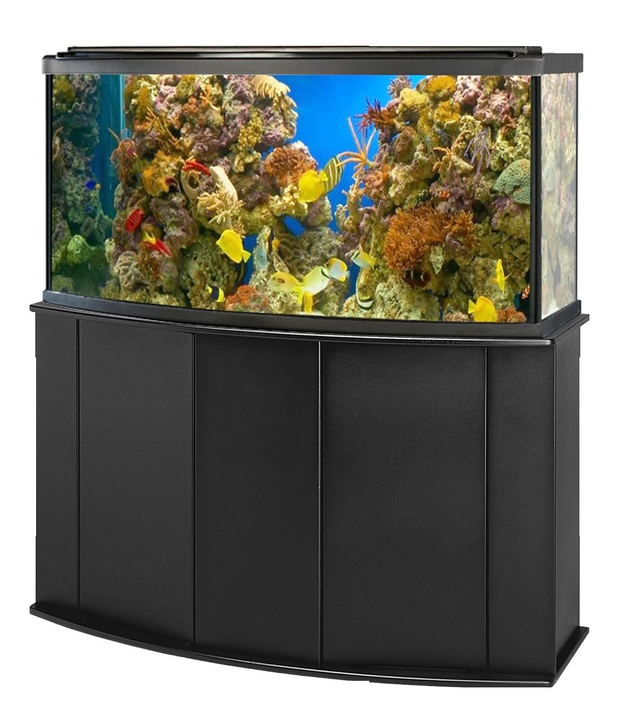 Aquarium Fish Tank PNG Image