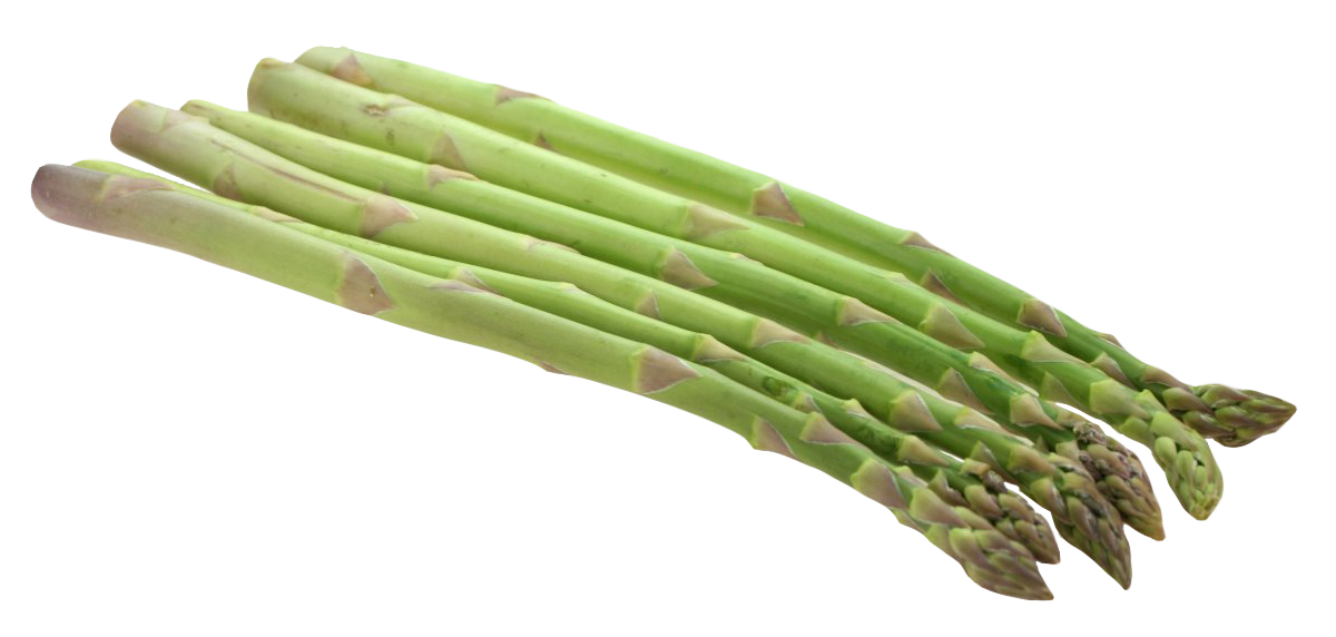 Asparagus PNG Image