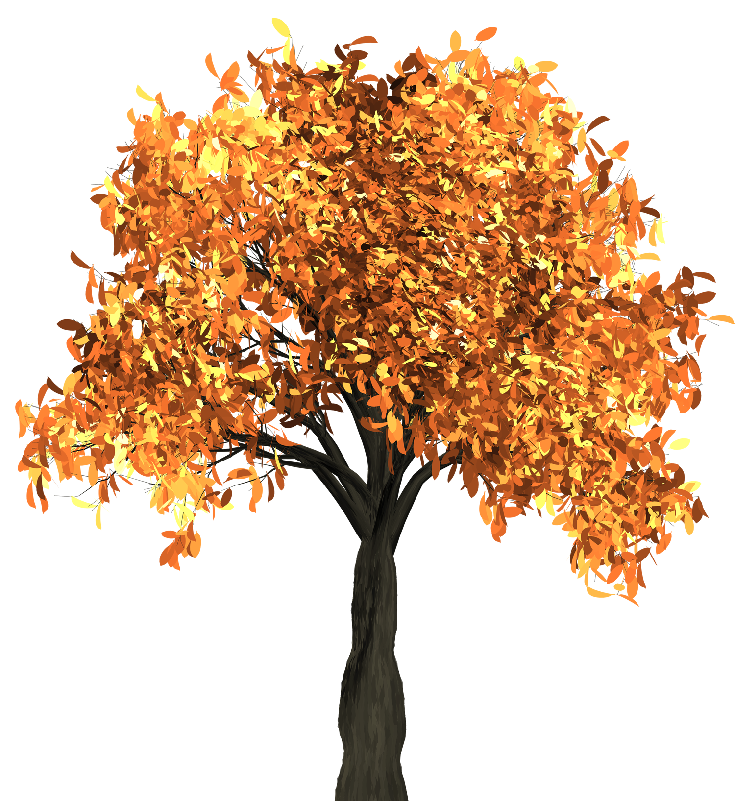 Autumn Tree PNG Image