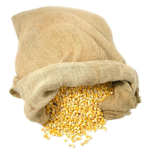 Bag of Maize