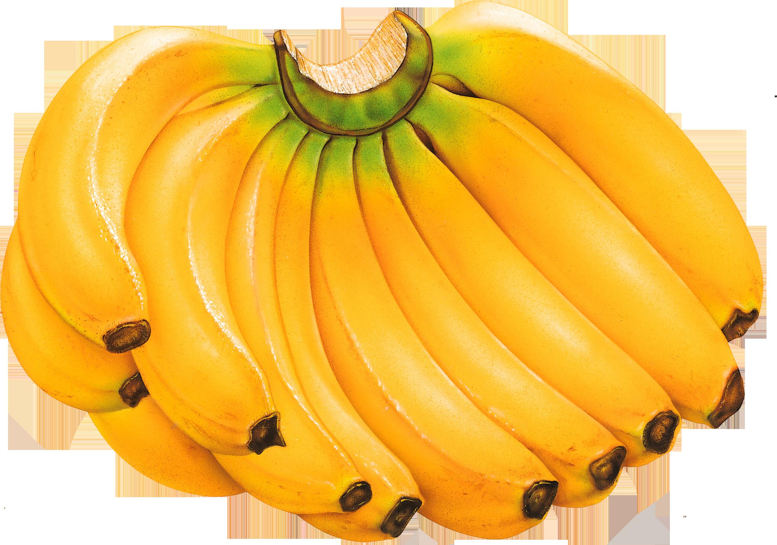 Banana Drawing