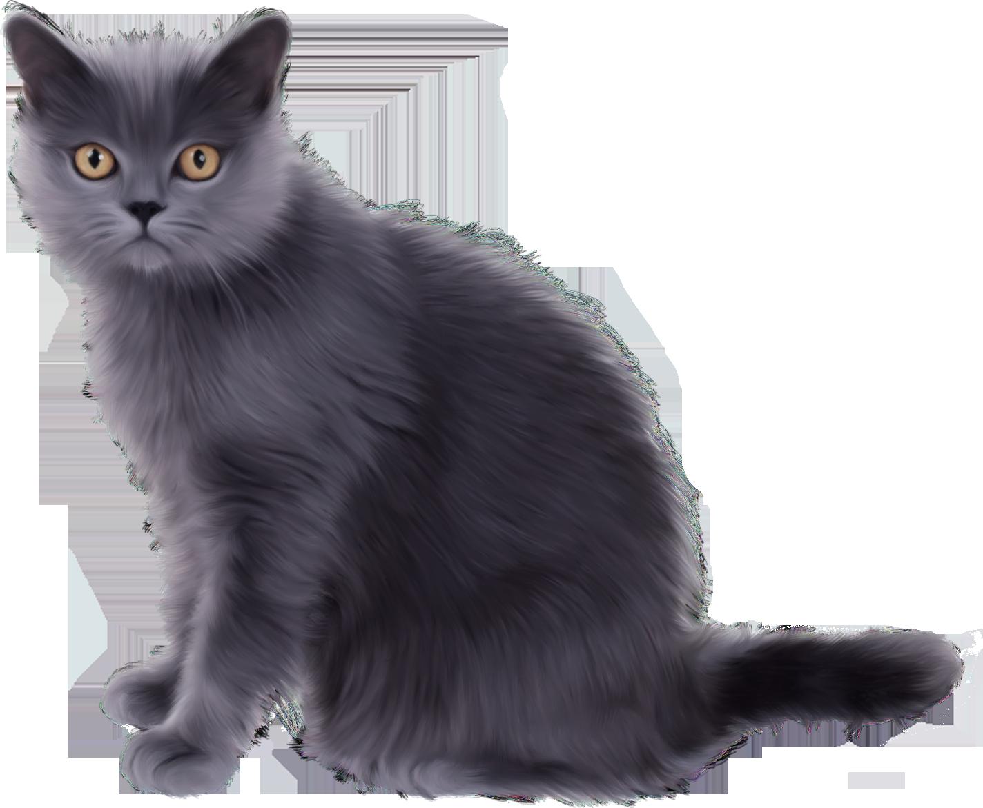 Black Sitting Cat PNG Image