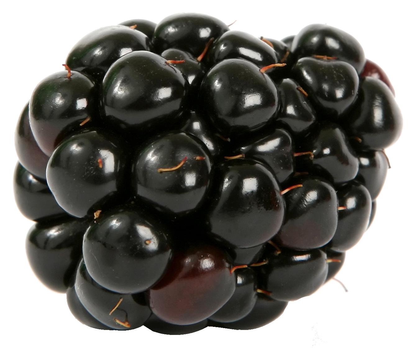 Blackberry PNG Image