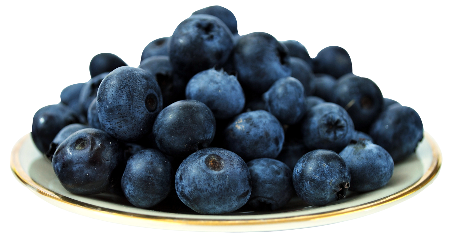 Blueberry in Plate PNG Image
