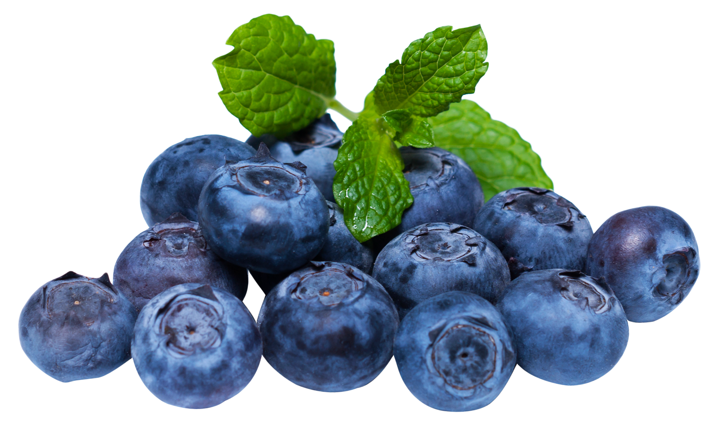 Blueberry with leaf PNG Image
