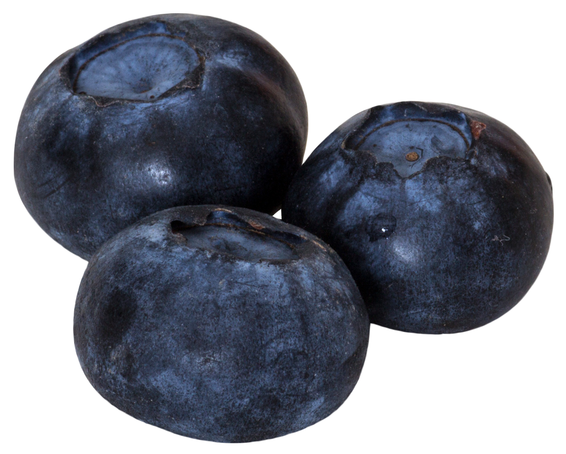 Blueberry Png Image Purepng Free Transparent Cc0 Png