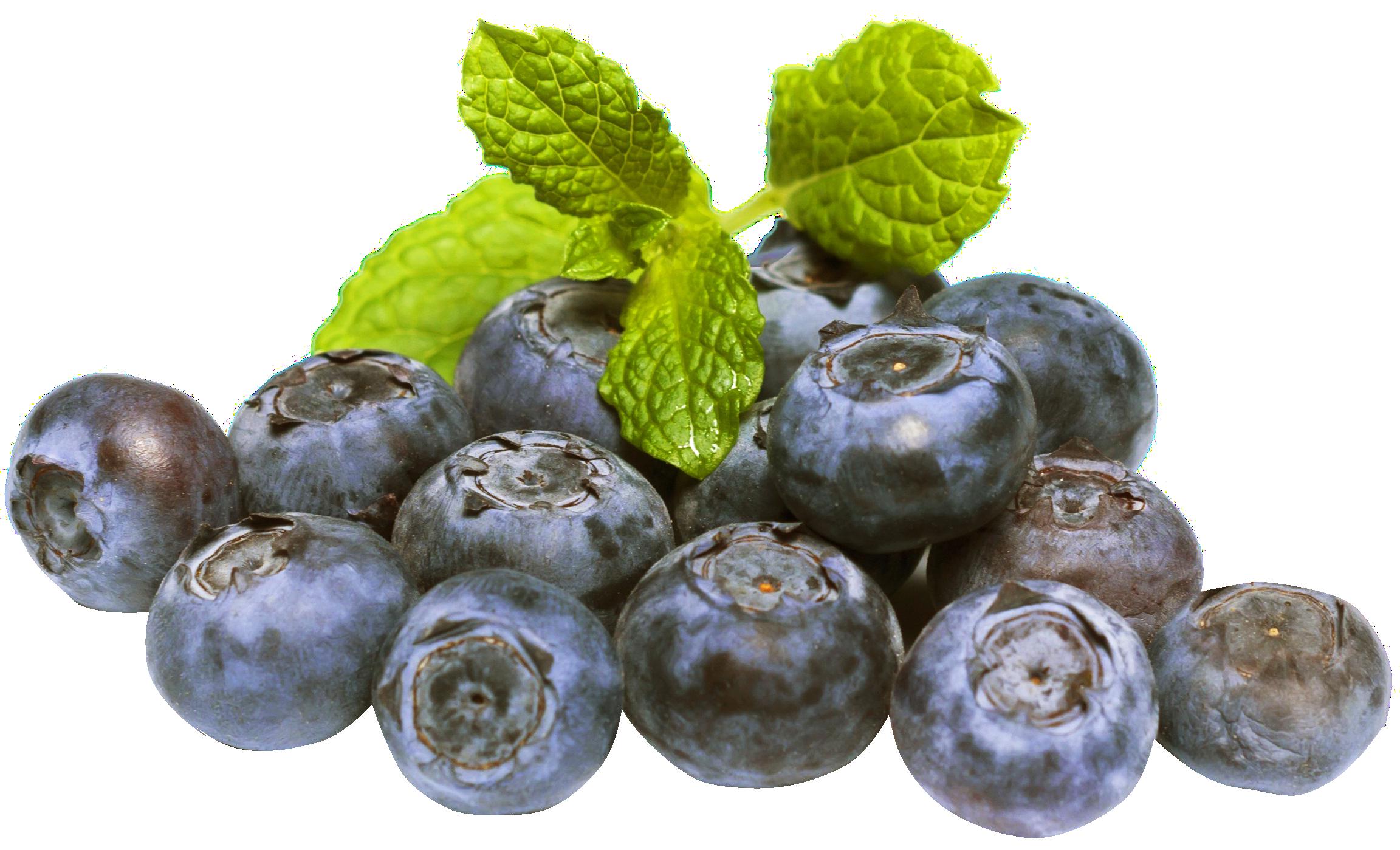 Blueberrys Variations