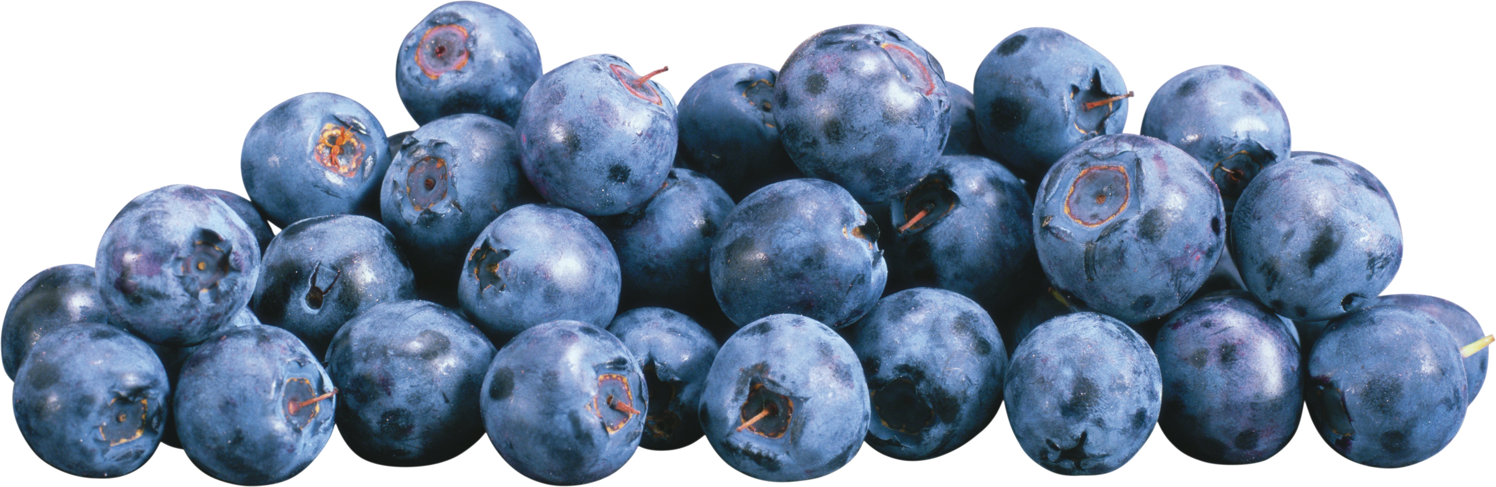 Blueberrys PNG Image