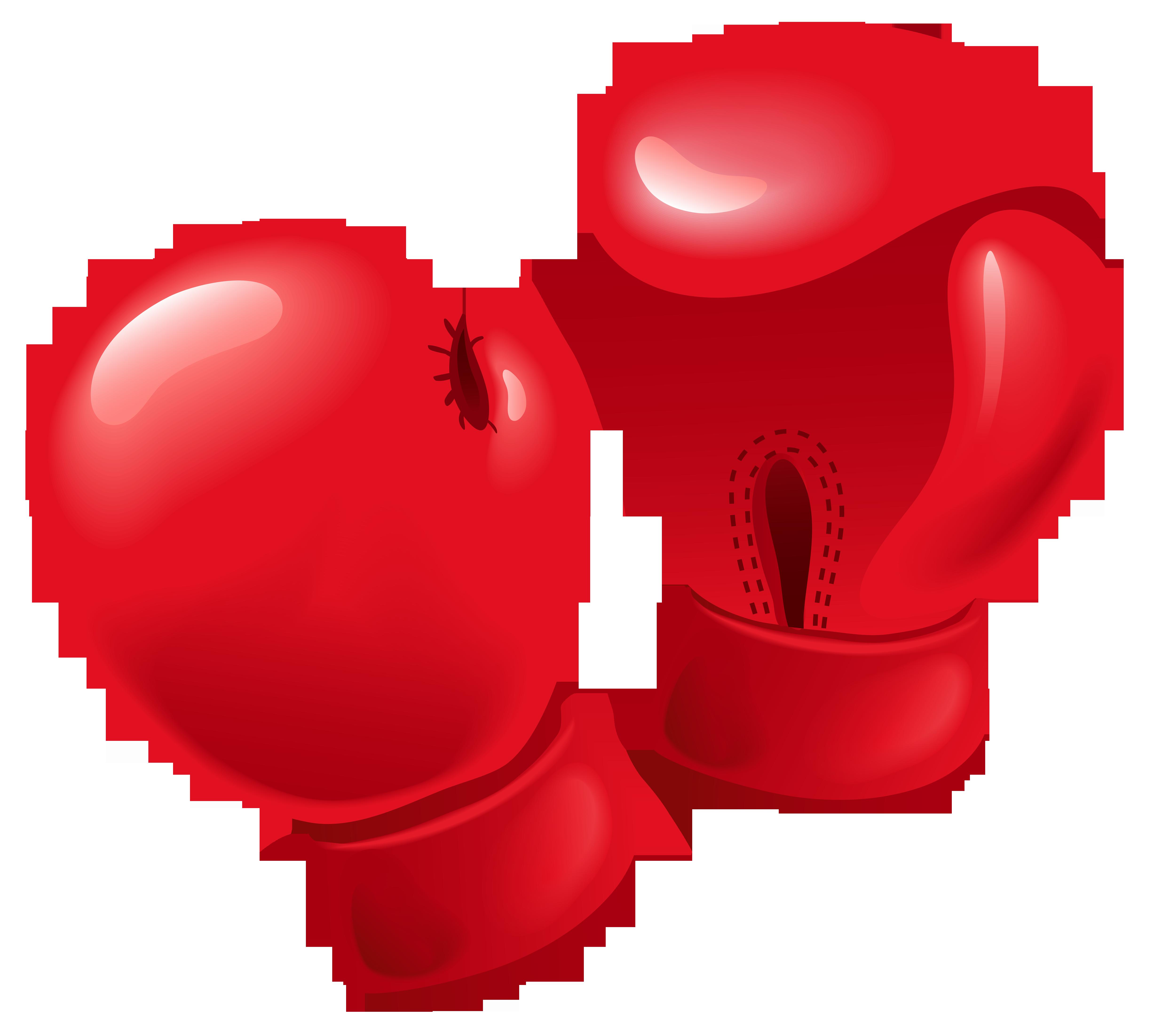 Shiv Naresh Teens Boxing Gloves 12oz: Boxing Glove PNG Image - PurePNG