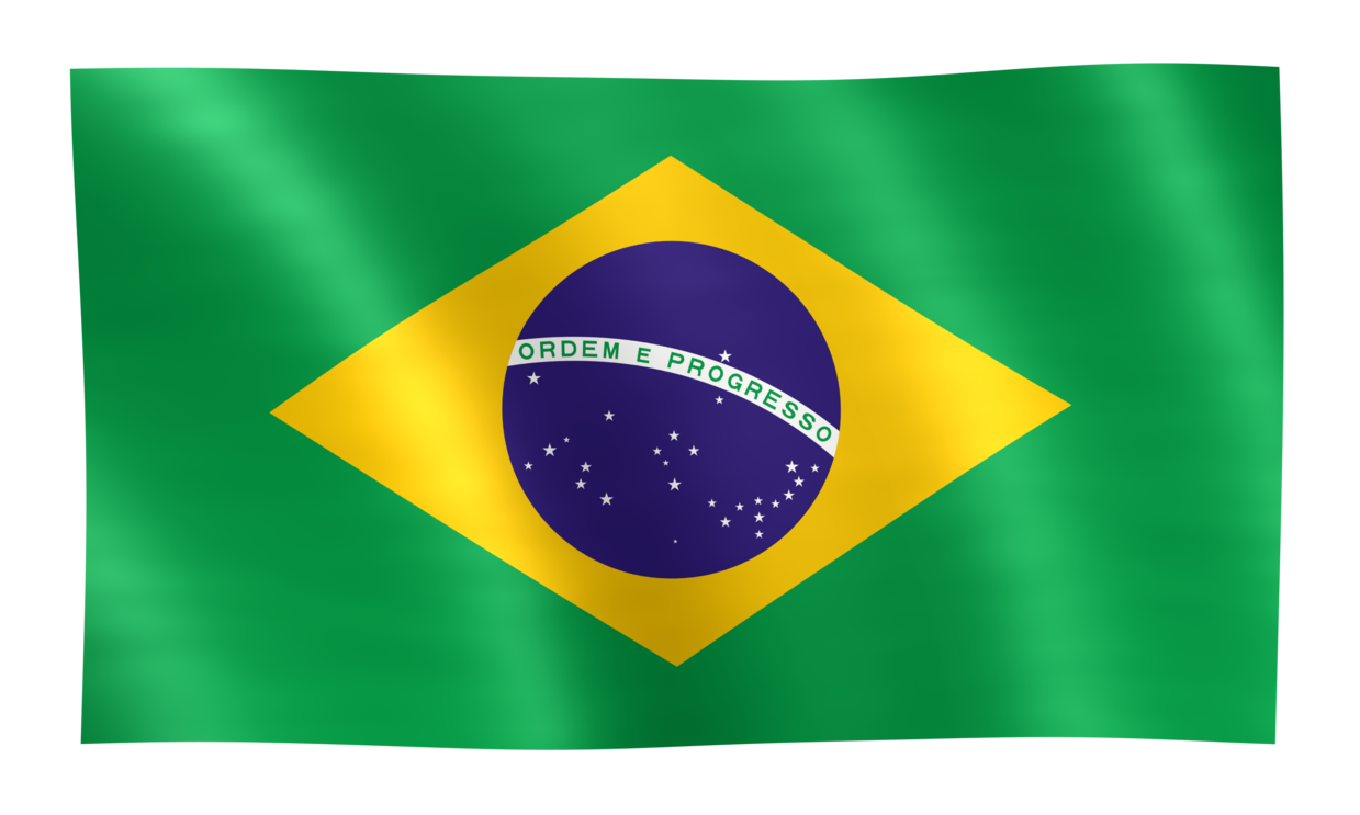 Brazil Flag PNG Image - PurePNG   Free transparent CC0 PNG ...