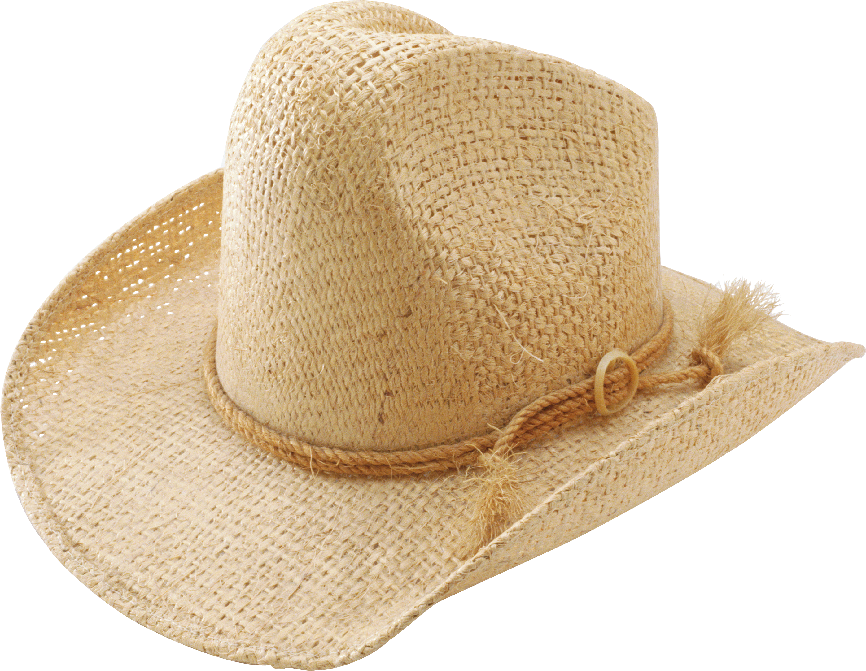 Brown Cow Boy's Hat PNG Image