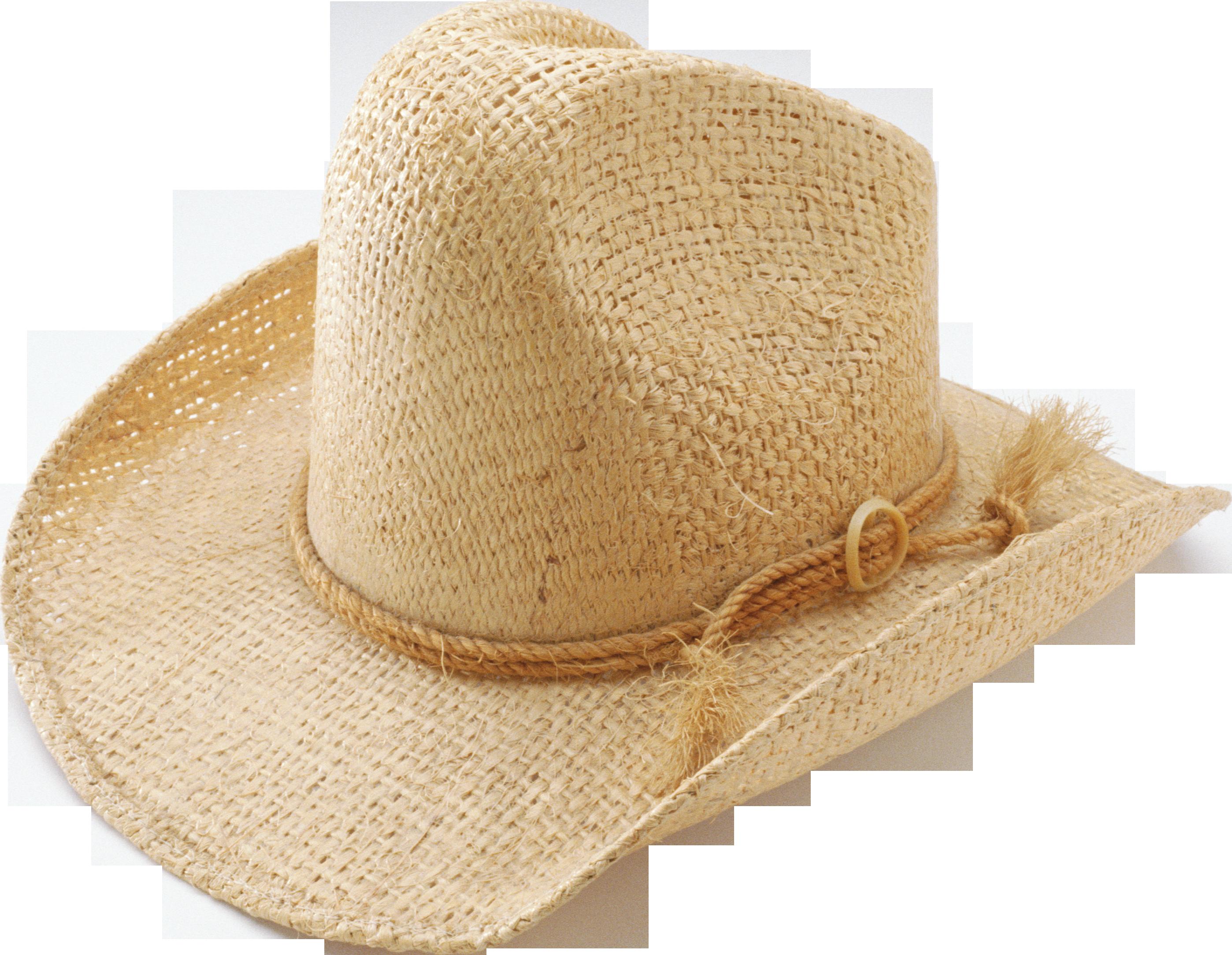 Brown Cow Boy's Hat