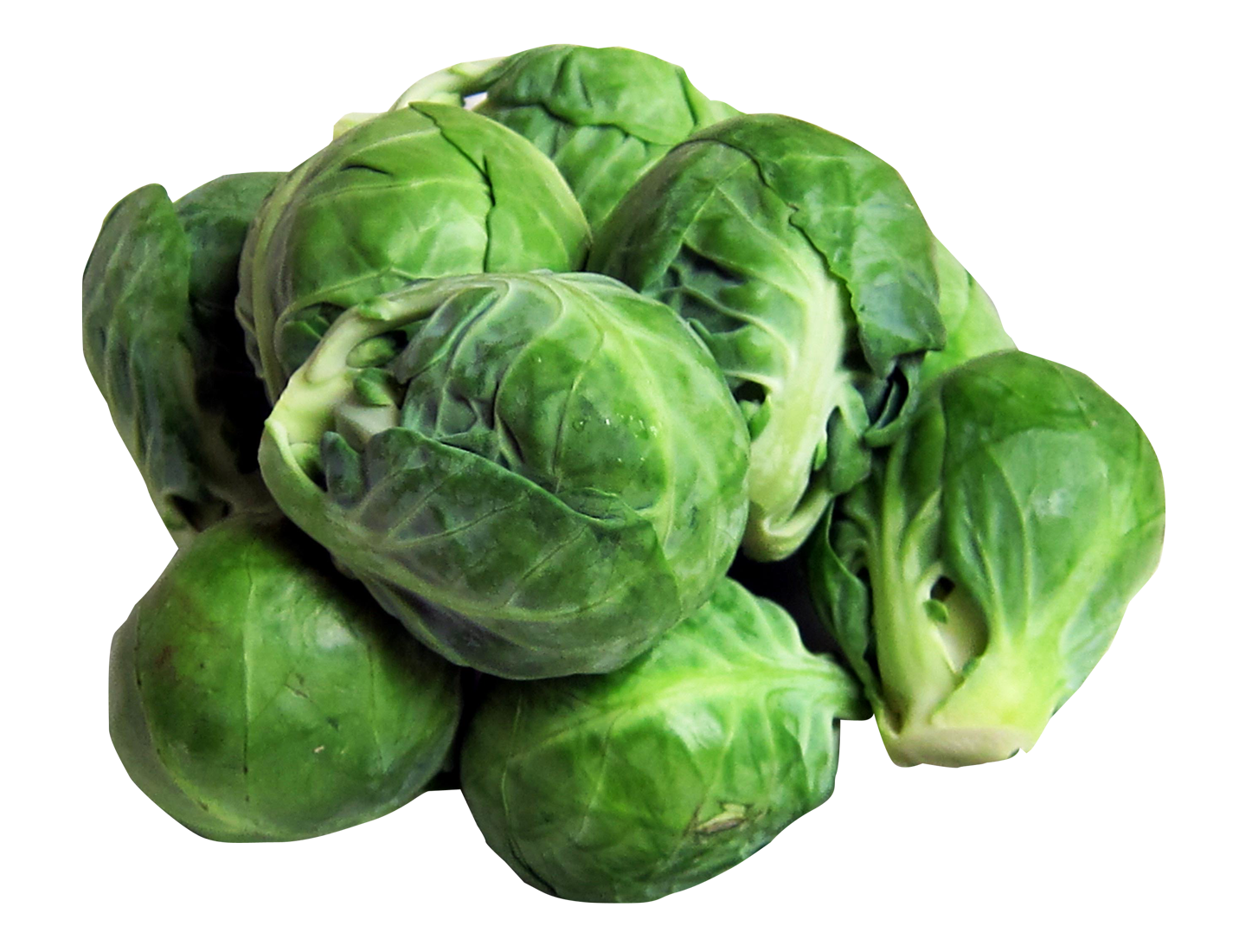Brussels Sprouts PNG Image
