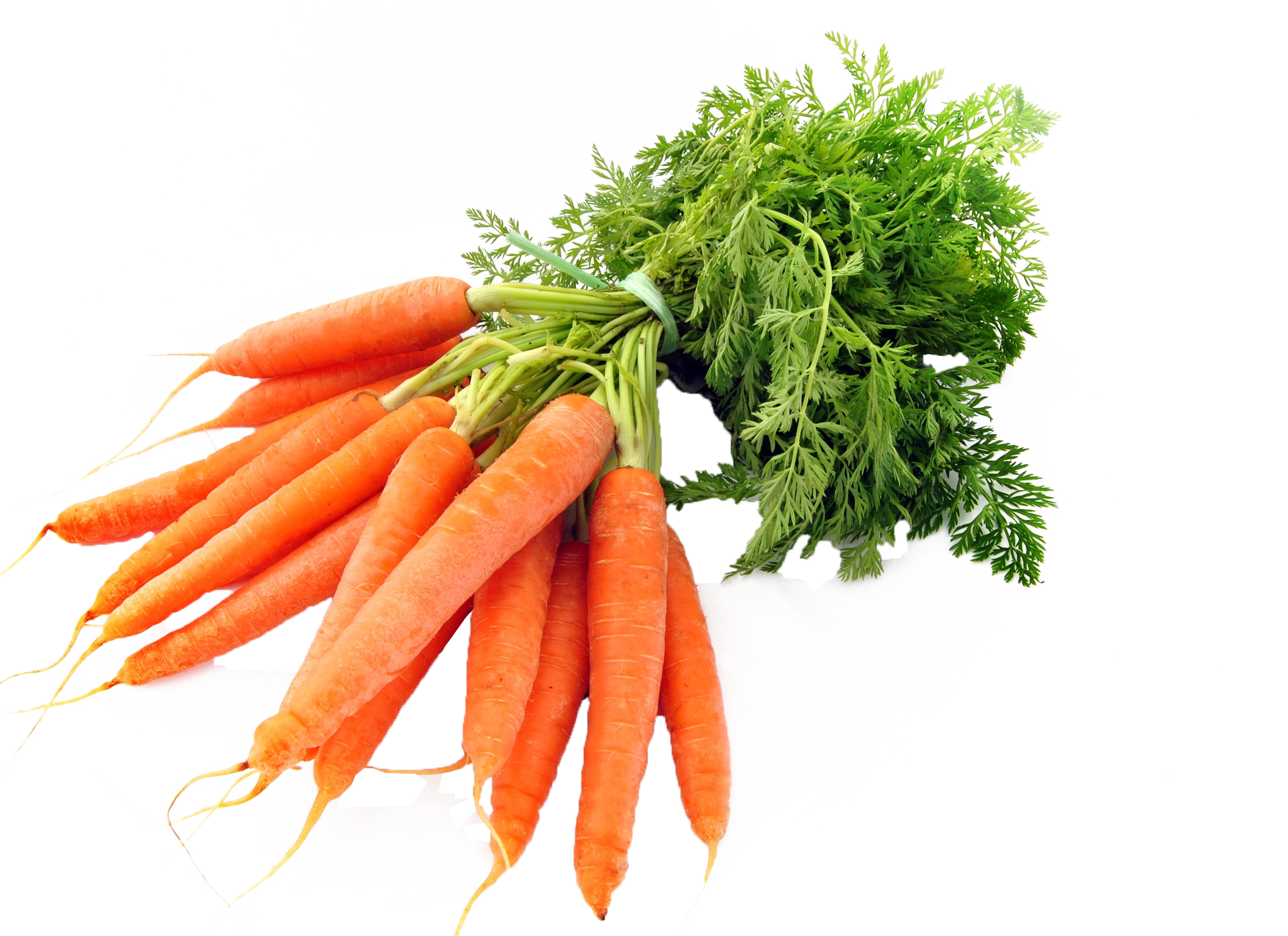 Carrots PNG Image