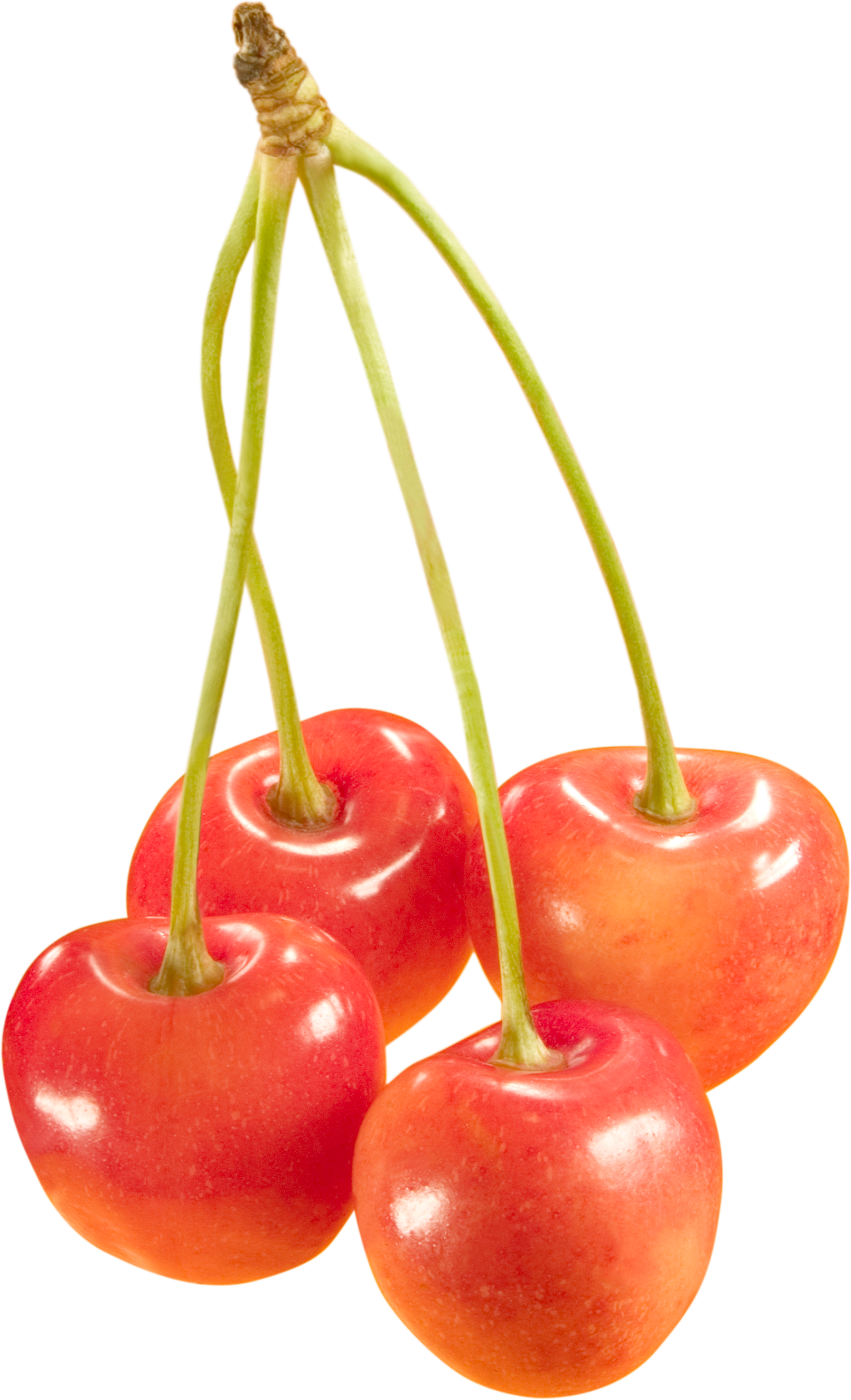 Cherries PNG Image