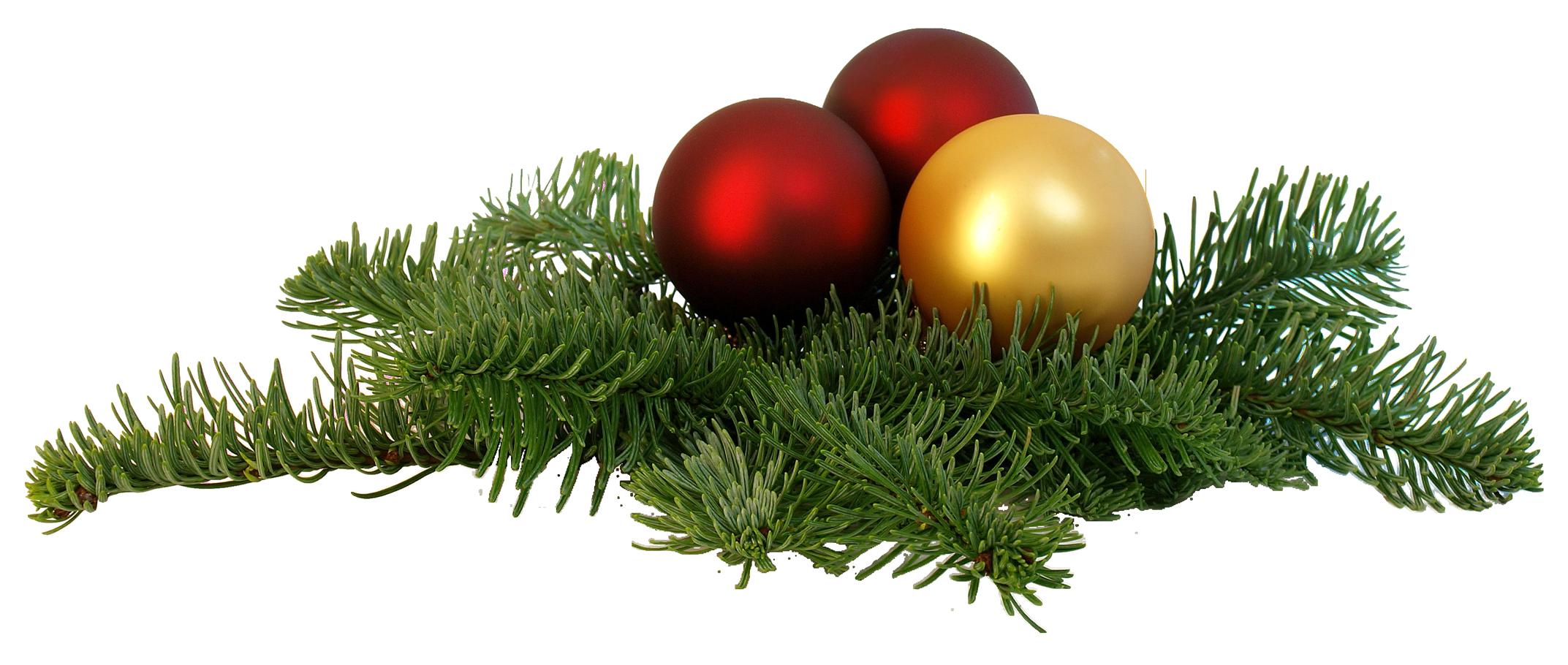 Christmas Branch Png.Christmas Branch Png Image Purepng Free Transparent Cc0