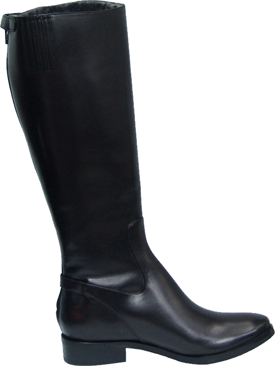 Cole Haan Simona Tall Boot (Women) PNG Image