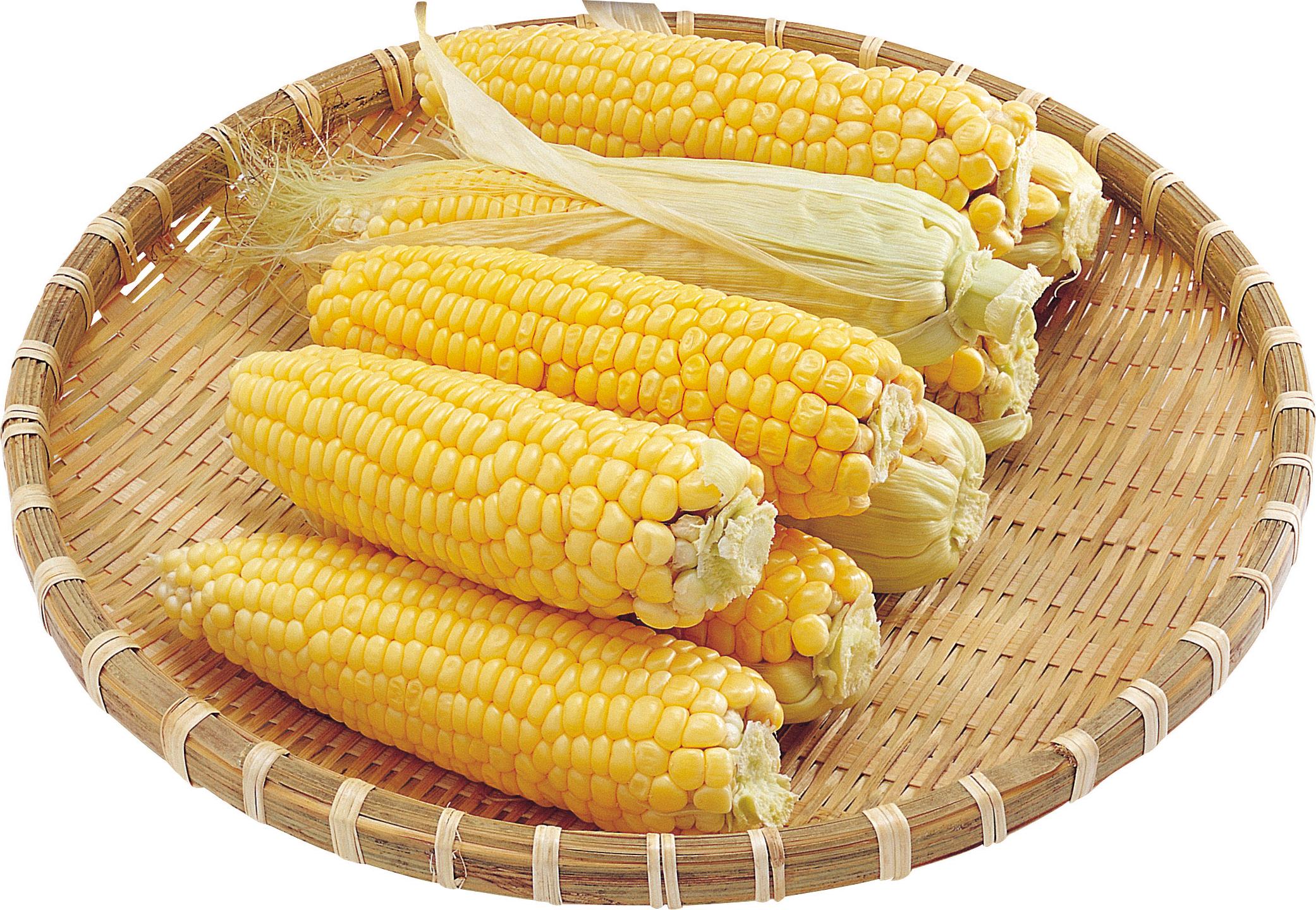 Corn PNG Image