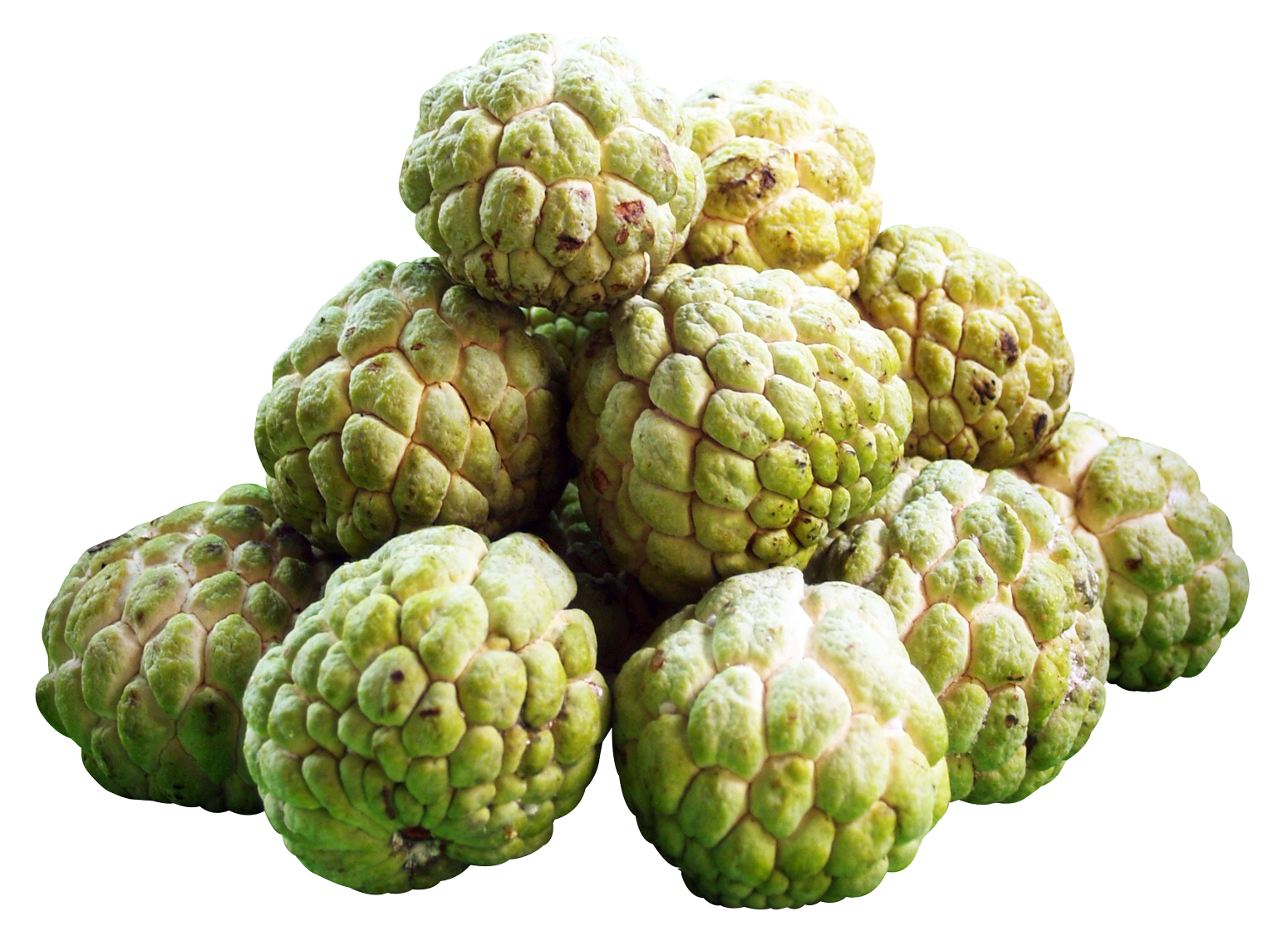 Custard Apples PNG Image