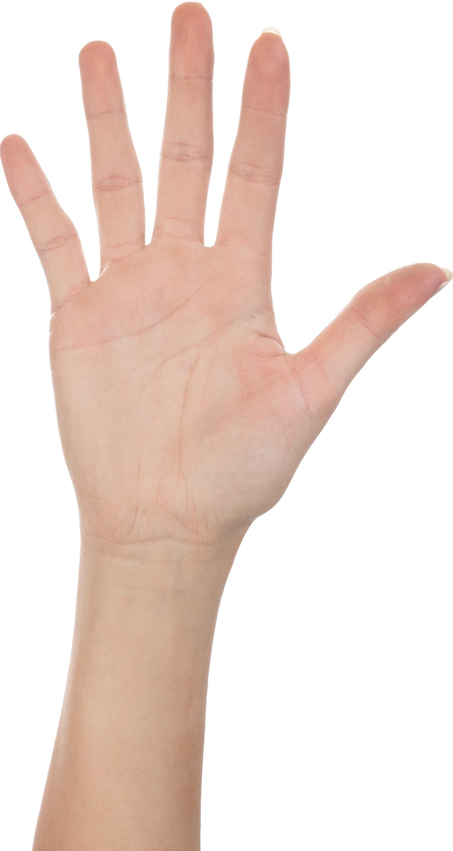 Five Finger Hand PNG Image
