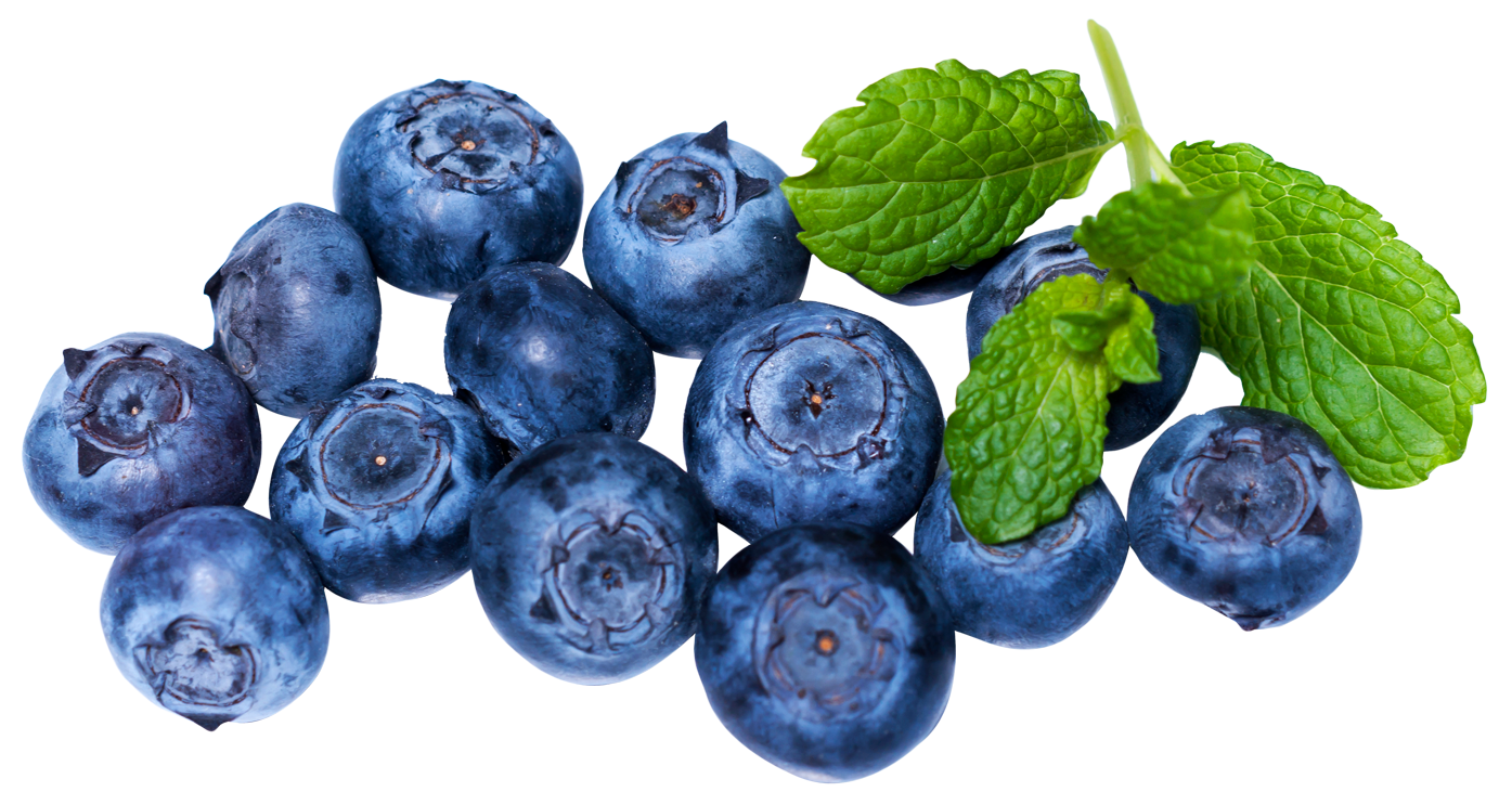 Fresh Blueberries PNG Image