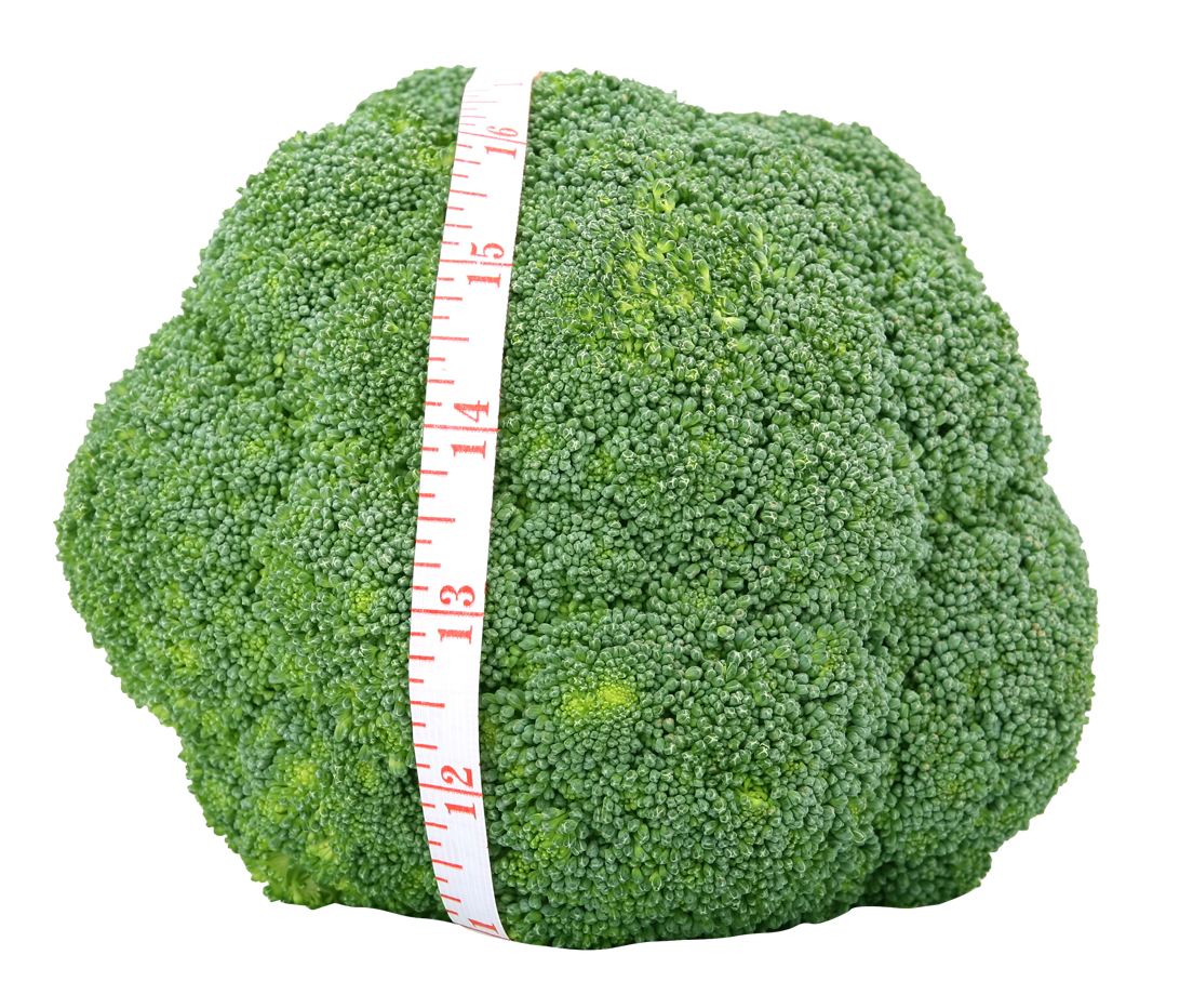Fresh Green Broccoli PNG Image